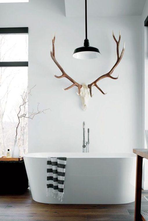 Elk European Mount