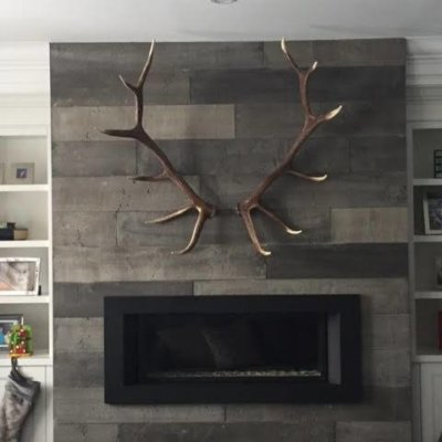 Elk Faux Single Antler
