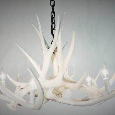 Whiteout Mule Deer Antler Chandelier