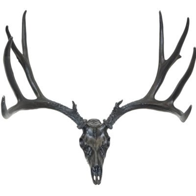 European Mule Deer Mount in Black