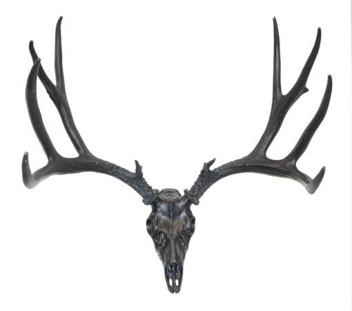 European Mule Deer Mount in Black