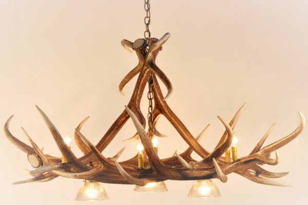 Whitetail Deer Antler Chandelier