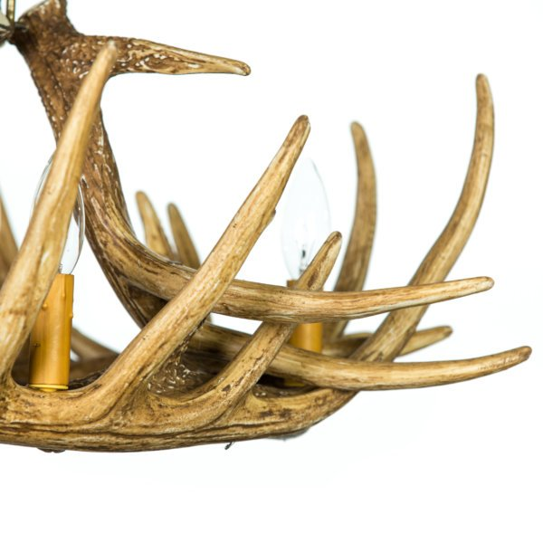 Whitetail Deer 6 Antler Chandelier