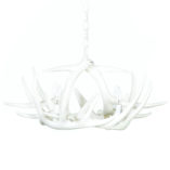 Whitetail Deer 6 Antler Chandelier in Pure White