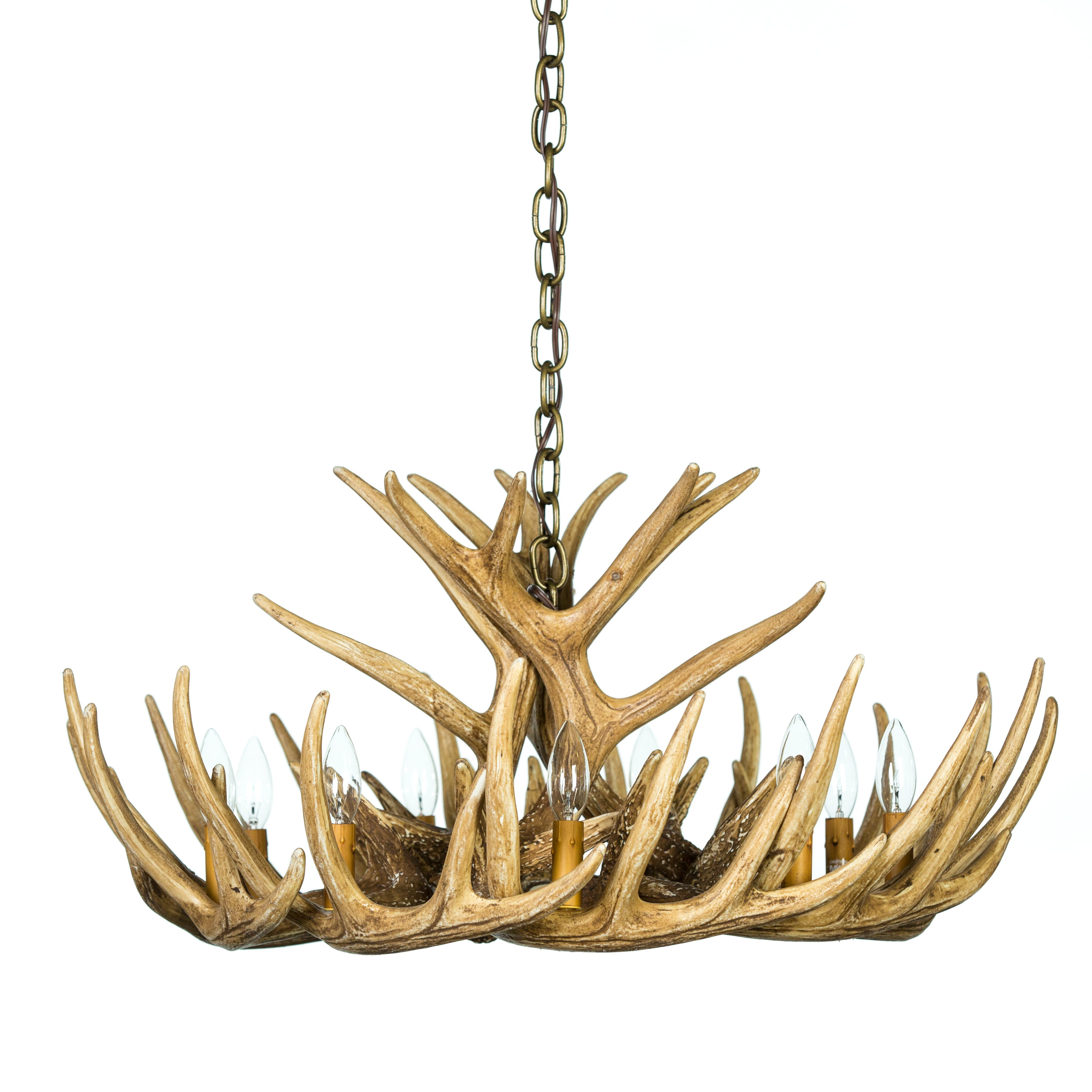 Whitetail Deer 12 Antler Chandelier Cast Horn Deisigns