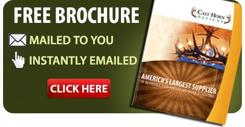 Free-Brochure-Banner-on-Home-Page-70-percent