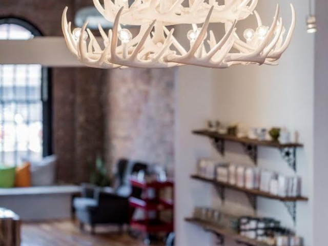 Whitetail Deer 24 Antler Chandelier in Pure White
