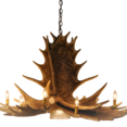 Moose 6 Antler Chandelier