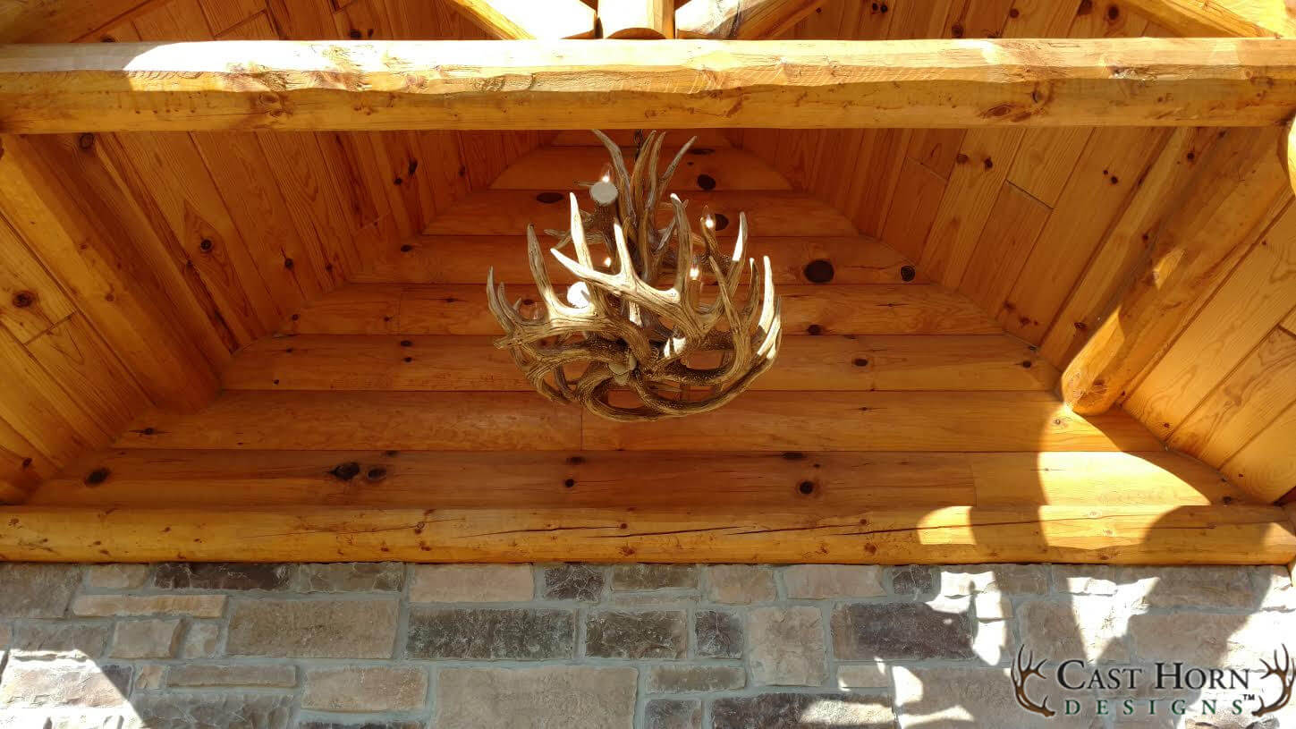 Whitetail Deer 12 Large Antler Chandelier