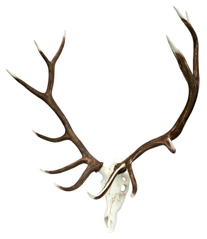 Mule Deer Faux Antler Cast Horn Designs