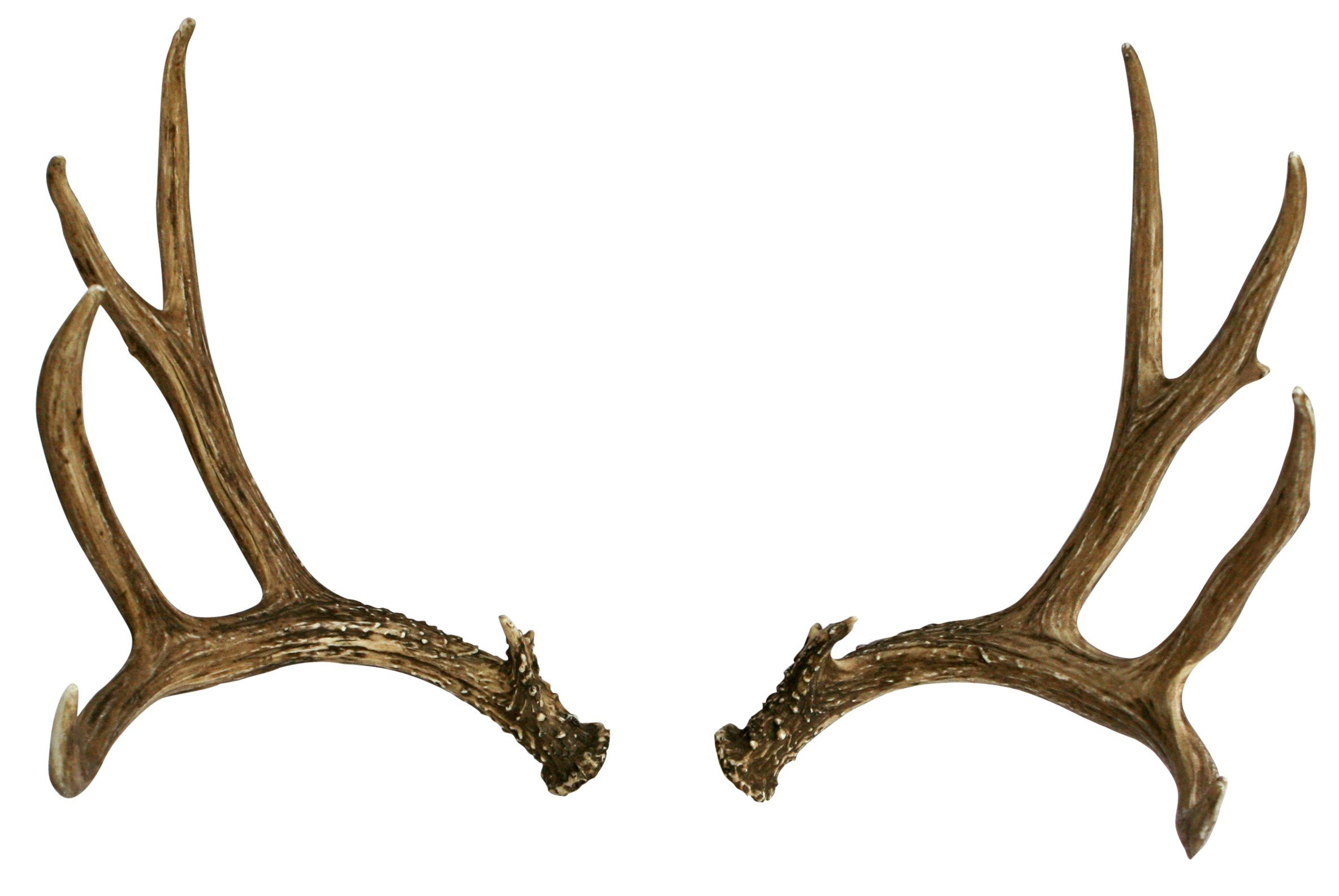 Modern Light Fixtures Mule Deer Faux Antler Cast Horn Designs