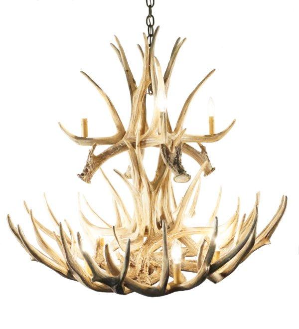 mule deer 16 antler chandelier
