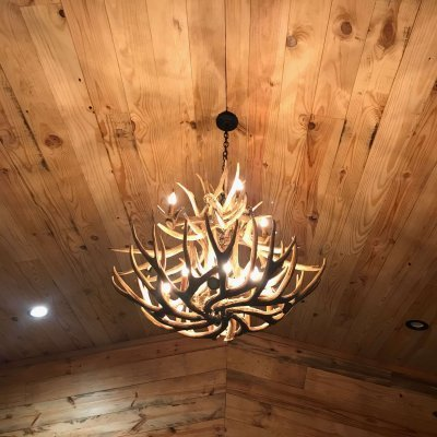 Mule Deer Antler Chandelier in Cabin