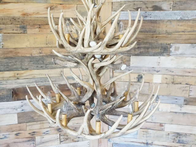 Whitetail Deer 24 Antler Cascade Chandelier