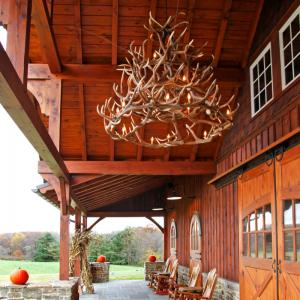 Powderly-Antler-Chandelier-800x800
